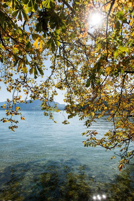 Pourquoi venir à Annecy en automne ?